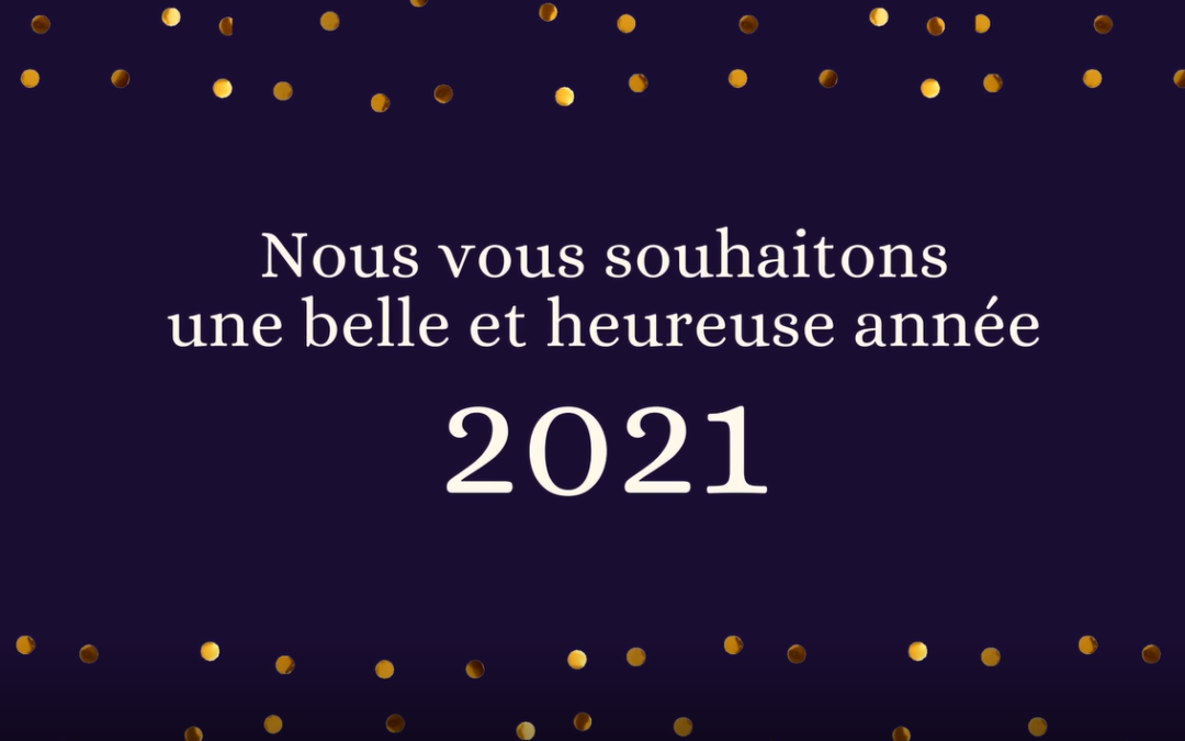Bonne année 2021 😊